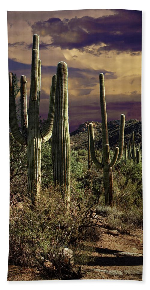 Art Bath Sheet featuring the photograph Saguaro Cactuses In Saguaro National Park by Randall Nyhof