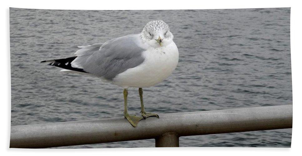 Seagulls Bath Sheet featuring the photograph Seagulls by Eric Schiabor