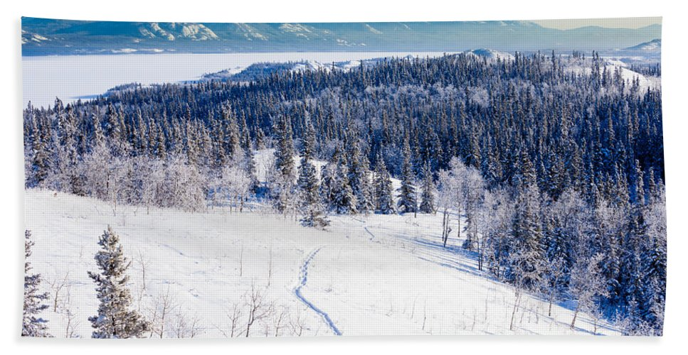 Activity Bath Sheet featuring the photograph Snowshoe Taiga Trail Landscape Yukon T Canada by Stephan Pietzko