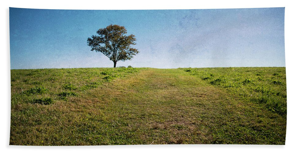 Landscape Hand Towel featuring the photograph Stands Alone by Karol Livote