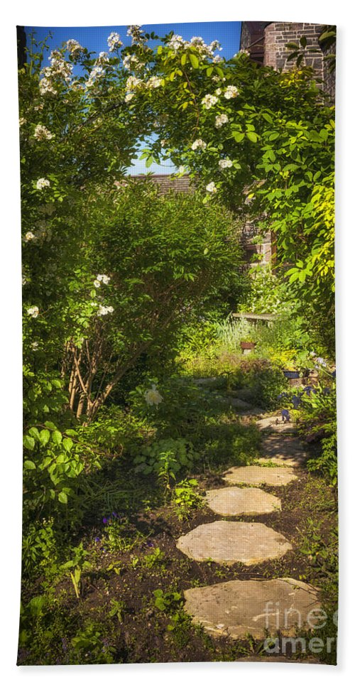 Garden Hand Towel featuring the photograph Summer Garden And Path by Elena Elisseeva