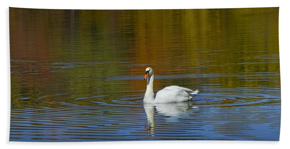 Art Hand Towel featuring the photograph Swan On Wintergreen Lake by Randall Nyhof