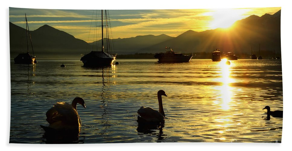 Swan Hand Towel featuring the photograph Swans In Sunset by Mats Silvan