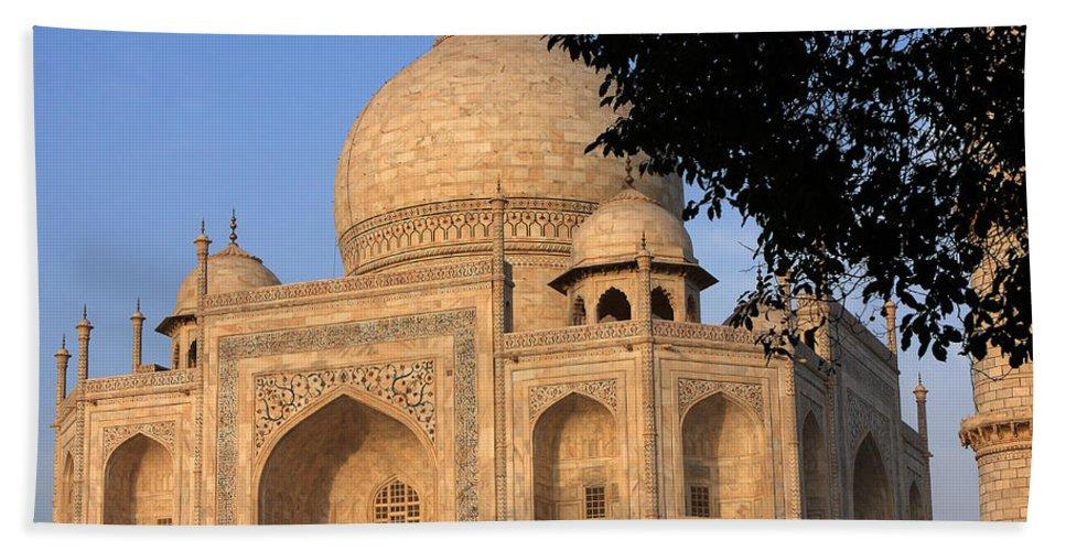 Taj Mahal Hand Towel featuring the photograph Taj Mahal In Evening Light by Aidan Moran