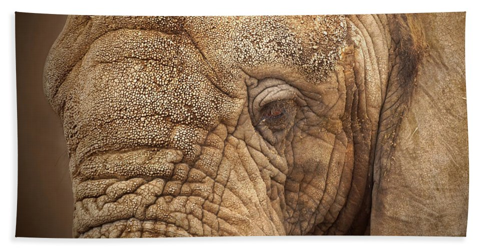 The Elephant Bath Sheet featuring the photograph The Elephant by Ernie Echols