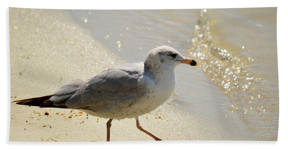 Seagull Bath Sheet featuring the photograph The Walk by Linda Kerkau