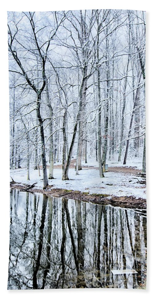 Tree Line Bath Towel featuring the photograph Tree Line Reflections In Lake During Winter Snow Storm by Alex Grichenko