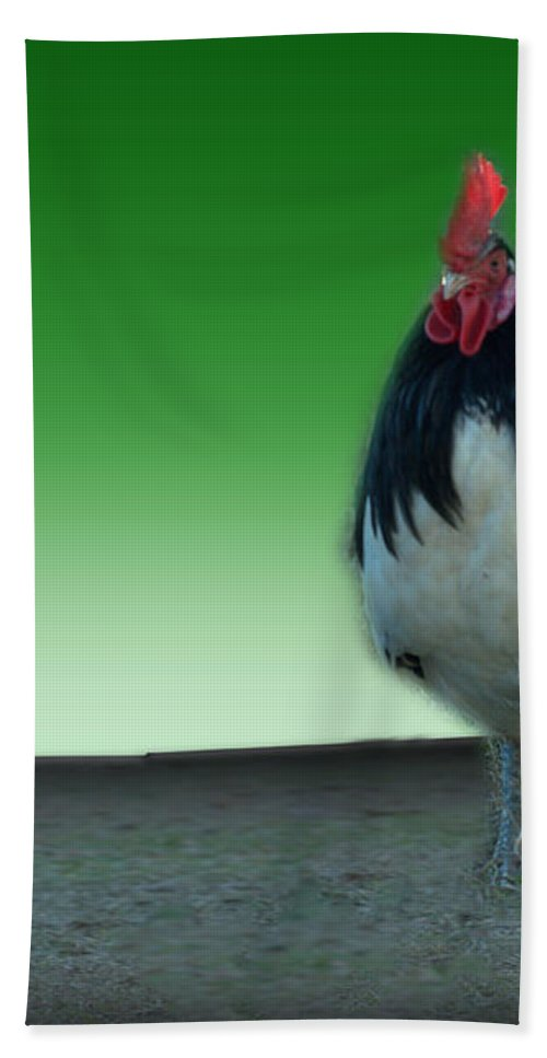 Chicken Bath Sheet featuring the photograph Valentine by Donna Brown
