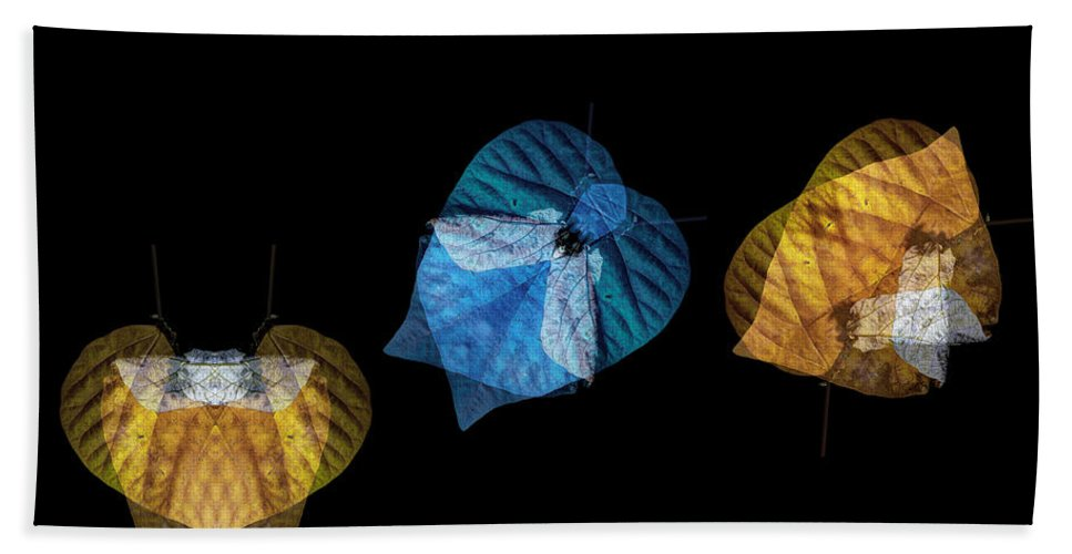 Leaf Hand Towel featuring the photograph Variations On A Leaf by Wayne Sherriff