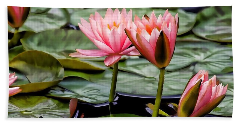 Water Lily Bath Sheet featuring the photograph Water Lilies by Joyce Baldassarre