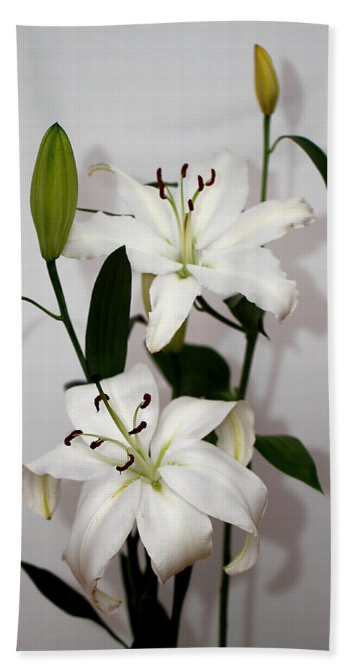 Lily Hand Towel featuring the photograph White Lily Spray by Carole-Anne Fooks
