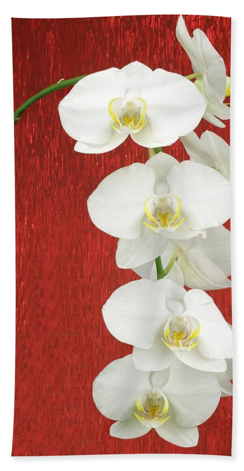 Orchid Bath Sheet featuring the photograph White Orchid by Rudy Umans