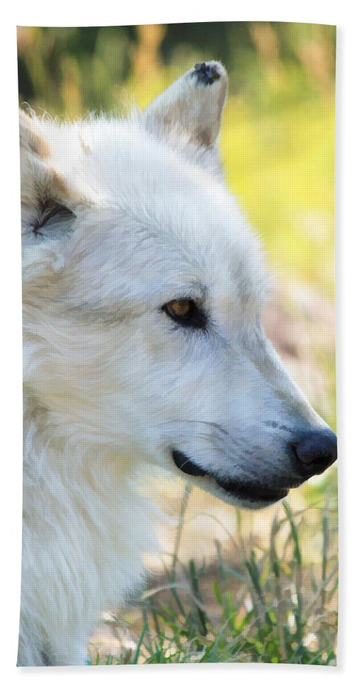 Wolves Hand Towel featuring the photograph White Wolf by Athena Mckinzie
