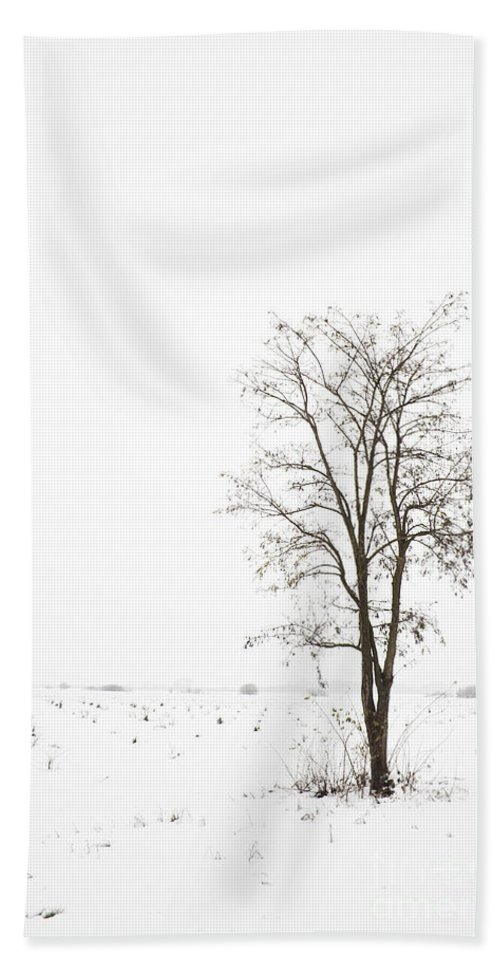 Day Hand Towel featuring the photograph Winter by Dan Radi