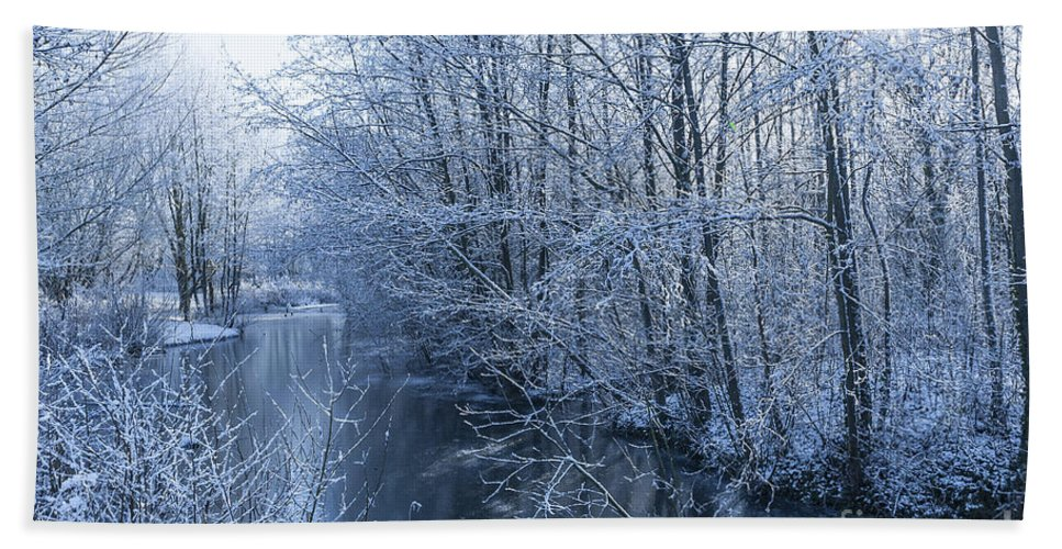 Birds Hand Towel featuring the photograph Winter Wonderland by Svetlana Sewell