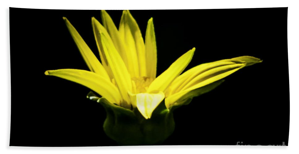 Yellow Bath Sheet featuring the photograph Yellow by Ronald Grogan