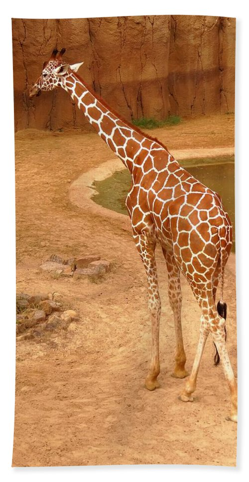 Giraffe Hand Towel featuring the photograph 1090 by Onyx Armstrong