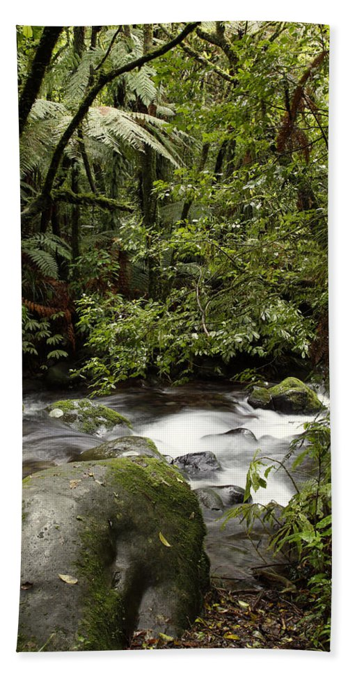 Water Bath Sheet featuring the photograph Jungle Stream by Les Cunliffe