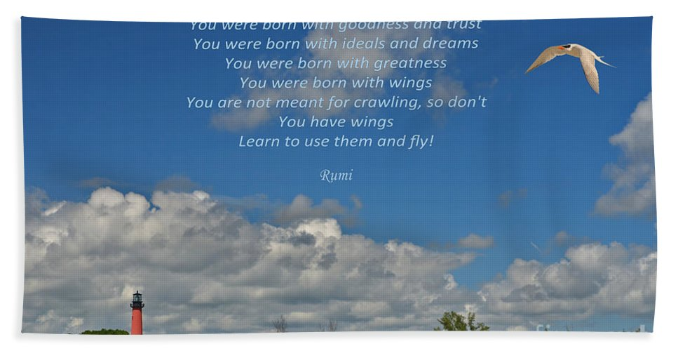 Rumi Bath Sheet featuring the photograph 123- Rumi by Joseph Keane