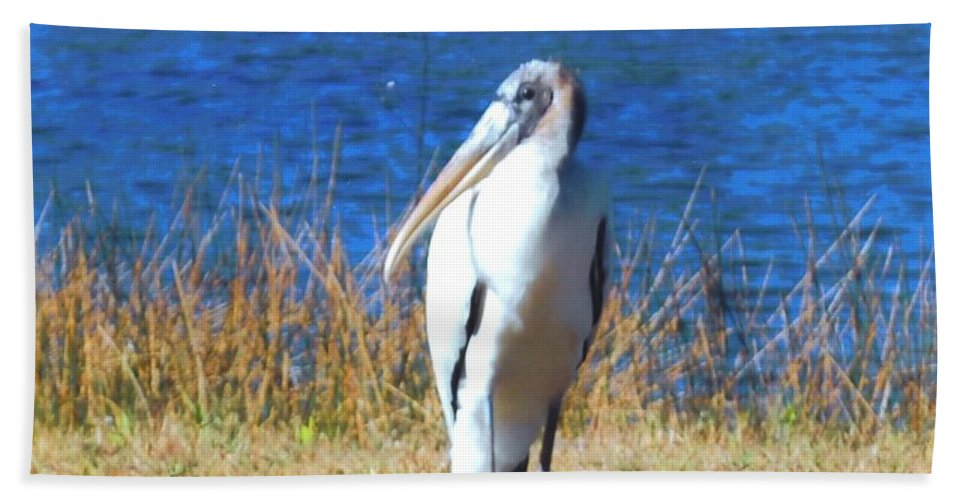 Resting At Lakes Park In Ft.myers Bath Sheet featuring the photograph Wood Stork by Robert Floyd