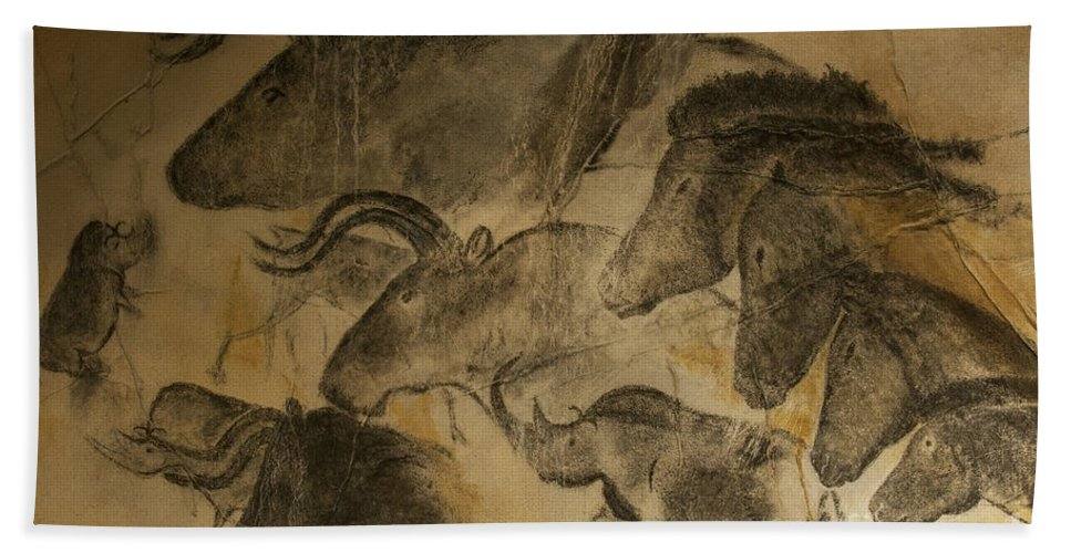 Chauvet Hand Towel featuring the photograph 131018p051 by Arterra Picture Library
