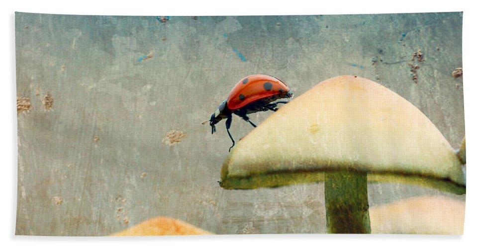 Ladybug Bath Sheet featuring the photograph Ladybug by Heike Hultsch