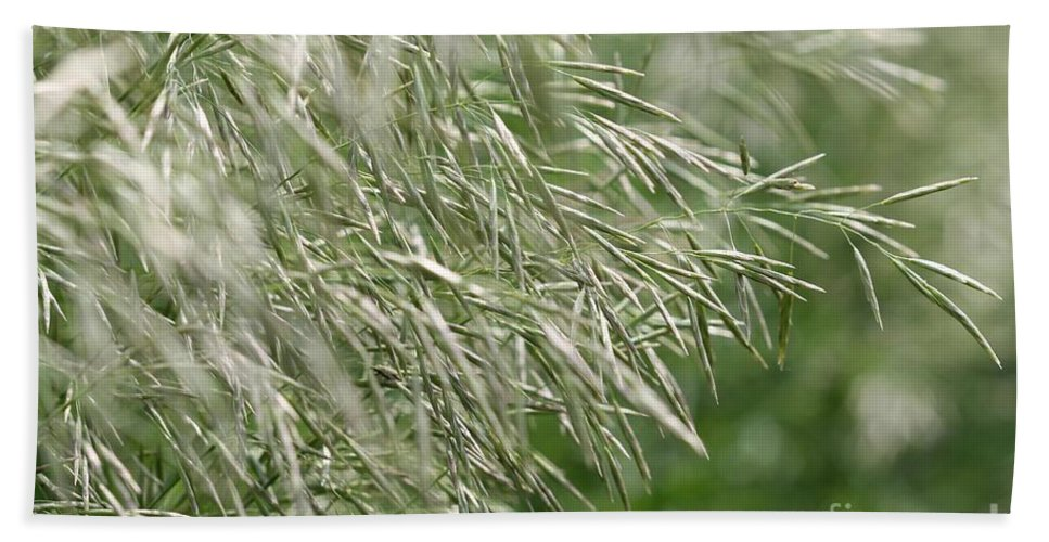 Mccombie Hand Towel featuring the photograph Brome Grass In The Hay Field by J McCombie