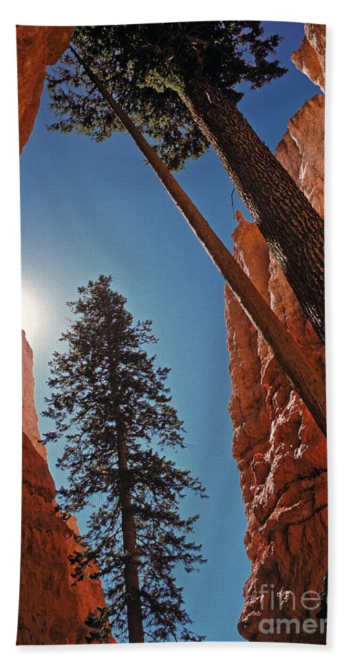 Bryce Canyon Bath Sheet featuring the photograph Bryce Canyon by Howard Stapleton