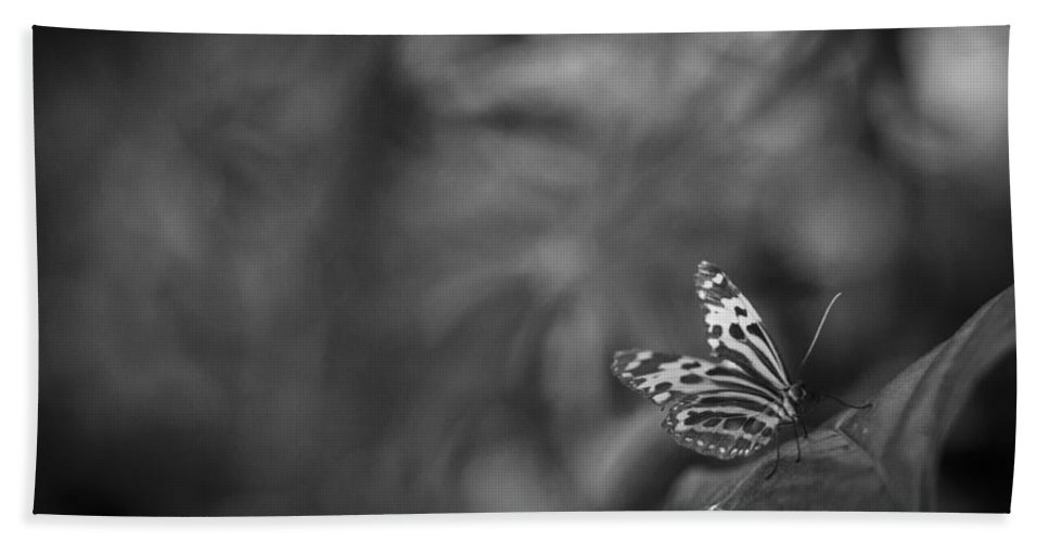Butterfly Bath Sheet featuring the photograph Butterfly Black And White by Bradley R Youngberg