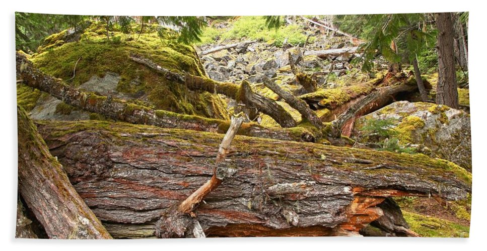 Cheakamus Rainforest Bath Sheet featuring the photograph Cheakamus Rainforest Debris by Adam Jewell