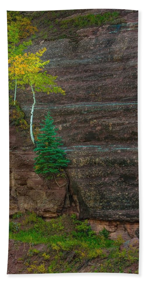 Landscape Hand Towel featuring the photograph Determination by Bill Sherrell