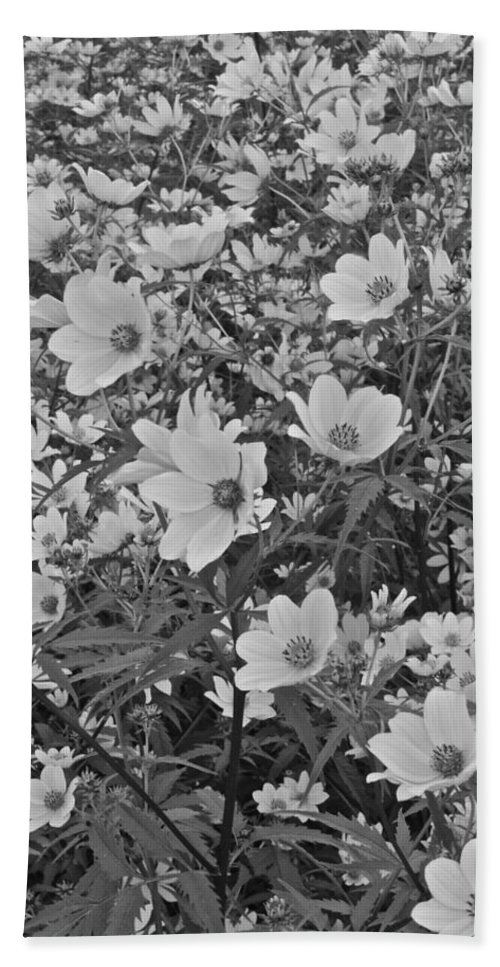 Flowers Hand Towel featuring the photograph Field Of Flowers by Frozen in Time Fine Art Photography