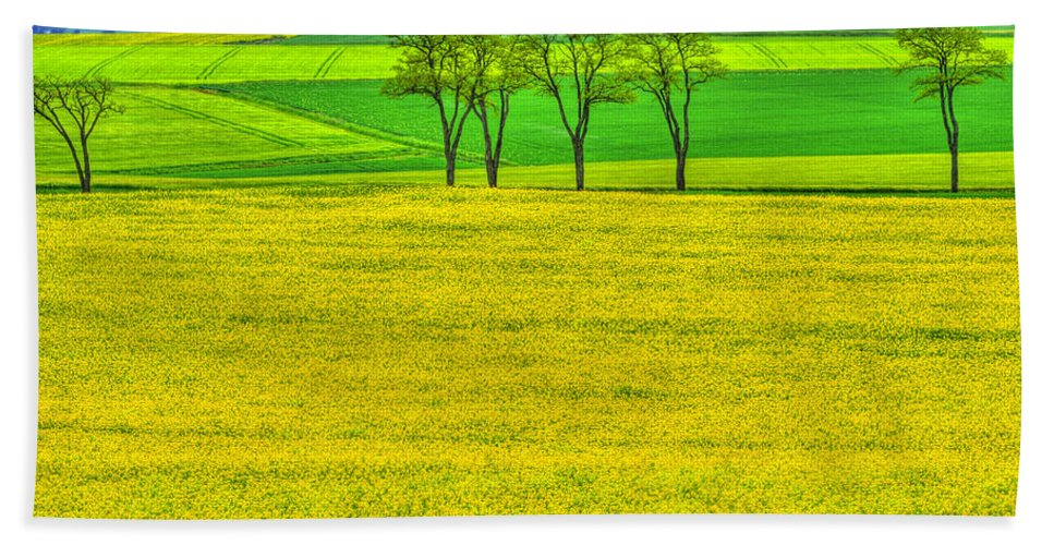 France Hand Towel featuring the photograph Fields Of Dreams by Midori Chan