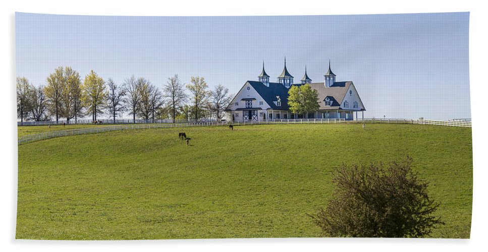Animal Hand Towel featuring the photograph Horse Farm by Jack R Perry