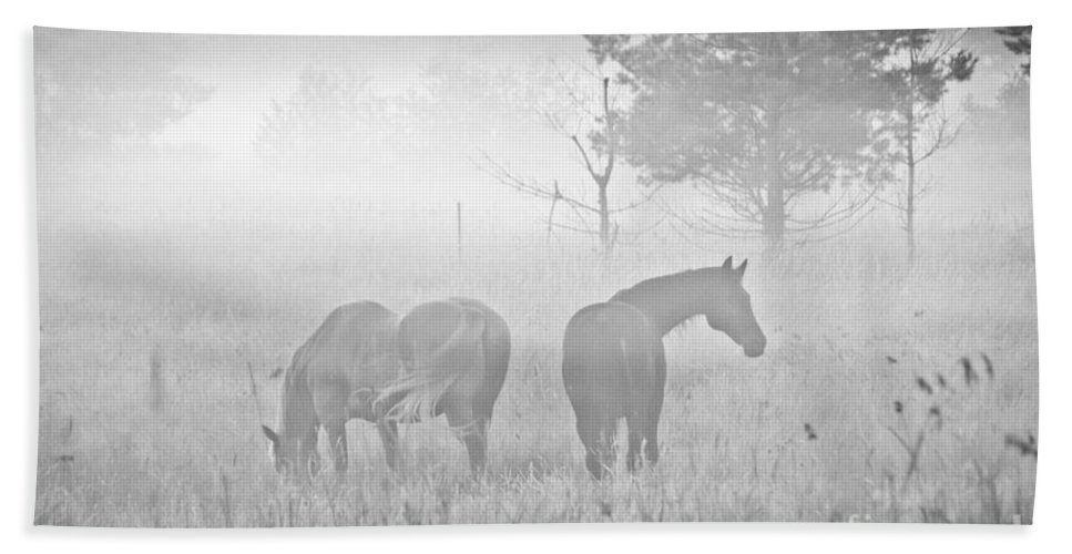Landscape Hand Towel featuring the photograph Horses In The Fog by Cheryl Baxter