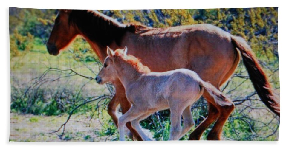 Mama With Colt Hand Towel featuring the photograph Horse's by Robert Floyd