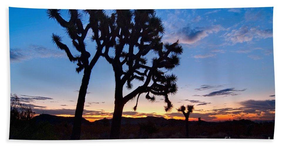 Yucca Brevifolia Bath Sheet featuring the photograph Josua Trees Beautifully Lit During Sunrise In Joshua Tree Nation by Jamie Pham