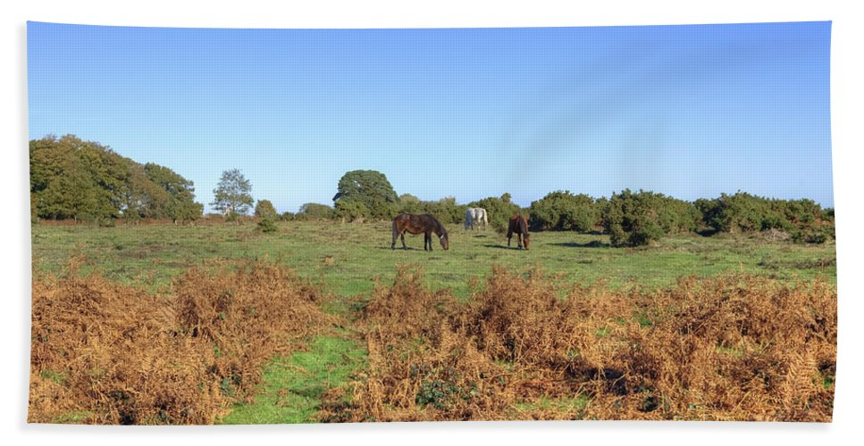 New Forest Bath Sheet featuring the photograph New Forest by Joana Kruse