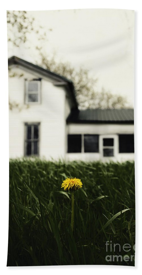 House Hand Towel featuring the photograph One by Margie Hurwich