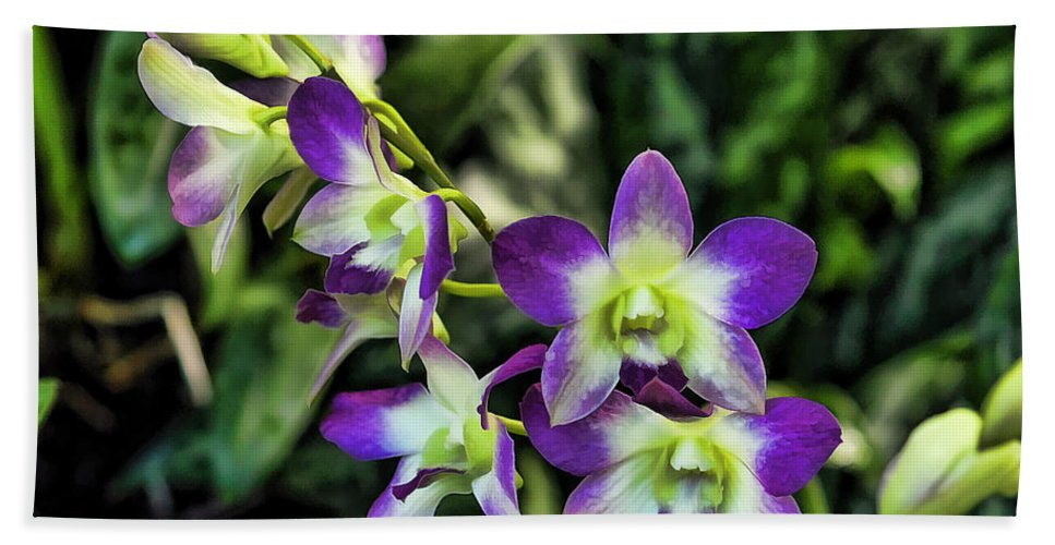 Orchid Bath Sheet featuring the photograph Orchid by Joyce Baldassarre