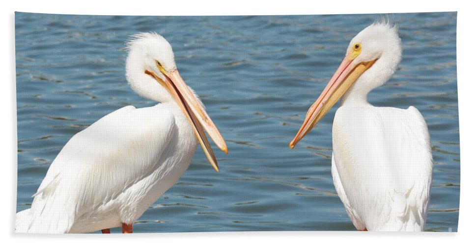 American White Pelican Hand Towel featuring the photograph Pelican Pals by Carol Groenen