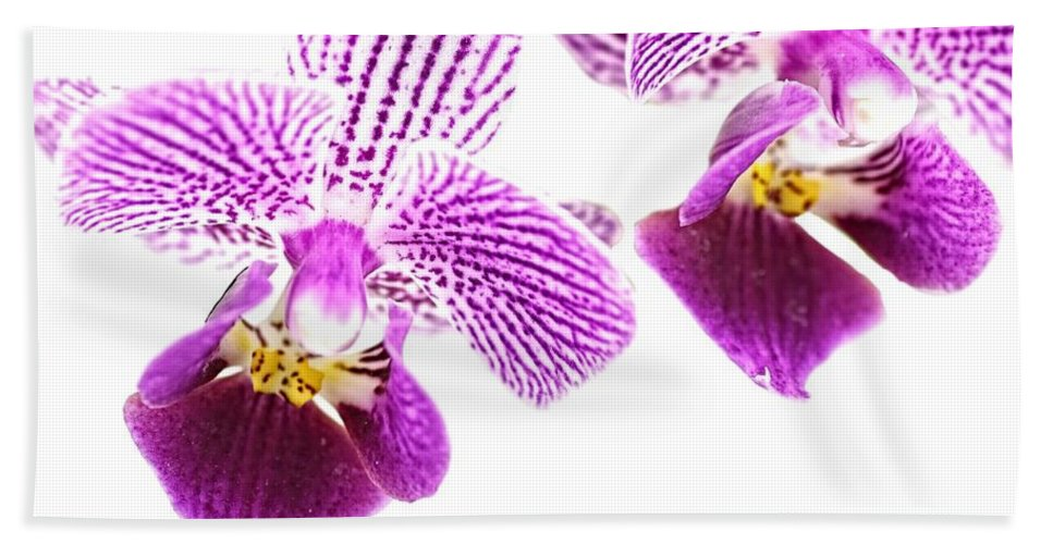 Orchid Hand Towel featuring the photograph Purple Orchid-5 by Rudy Umans