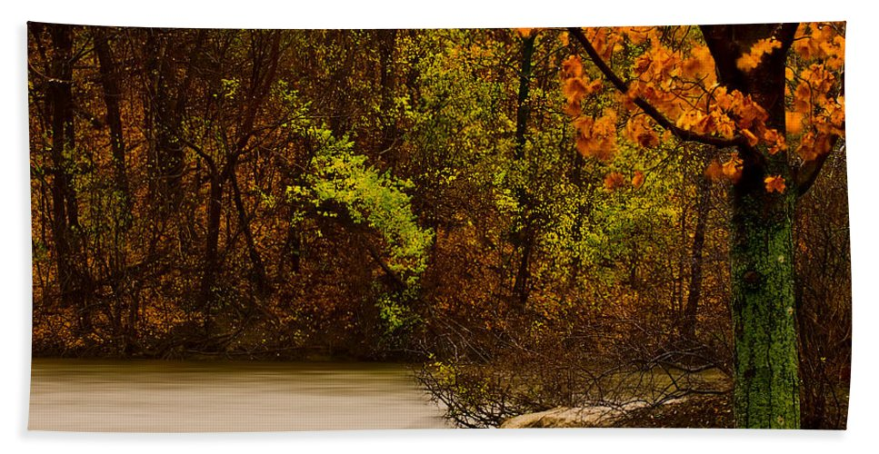 Autumn Hand Towel featuring the photograph Rainy Morning by Onyonet Photo Studios