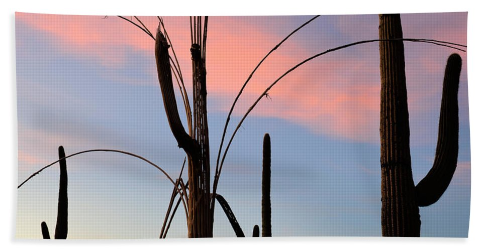 Nature Hand Towel featuring the photograph Saguaro Silhouettes by John Shaw