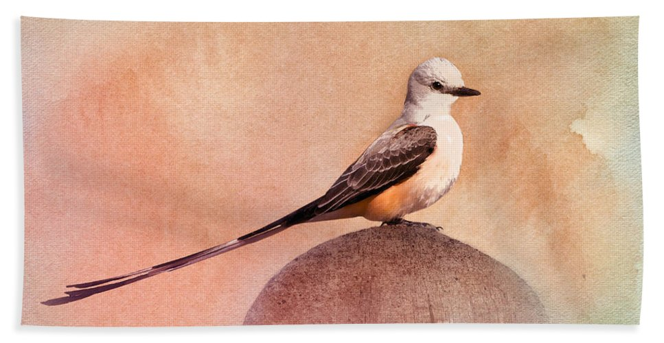 Flycatcher Hand Towel featuring the photograph Scissor-tailed Flycatcher by Betty LaRue
