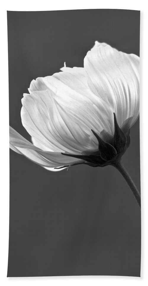 Flower Bath Sheet featuring the photograph Simply Beautiful In Black And White by Penny Meyers