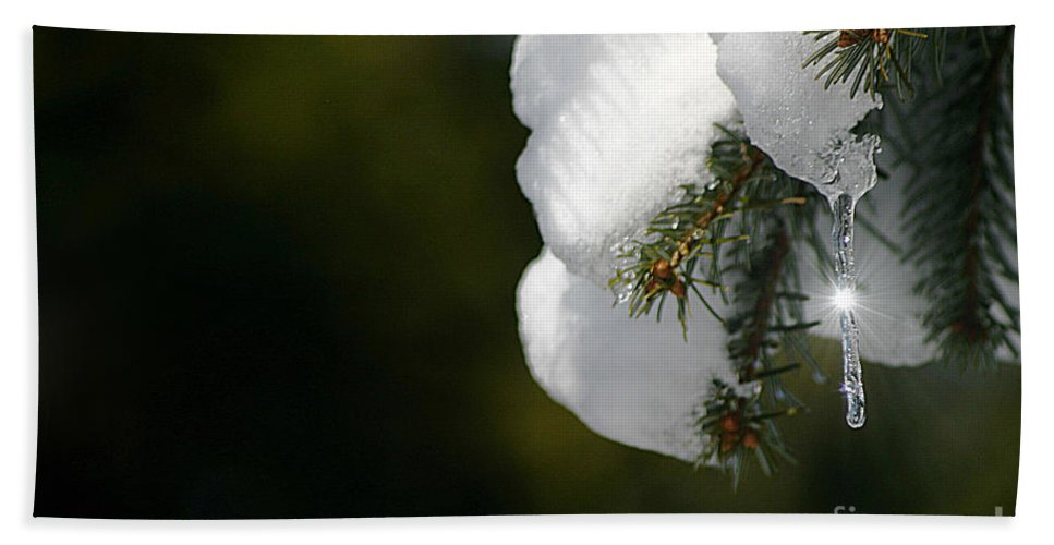 Winter Hand Towel featuring the photograph Sparkle by Living Color Photography Lorraine Lynch