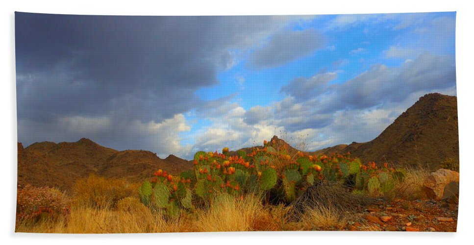 Landscape Bath Sheet featuring the photograph Springtime In Arizona by James Welch