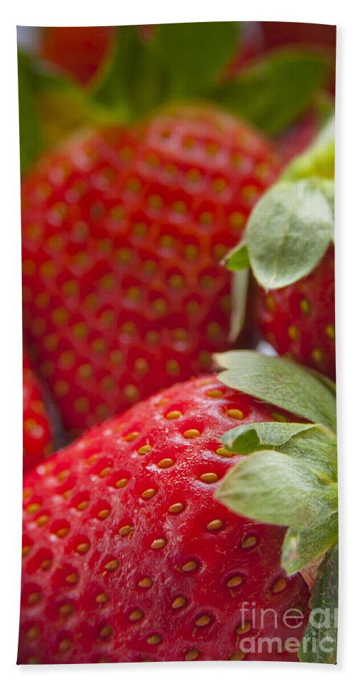 Macro Hand Towel featuring the photograph Strawberries by Tim Hester