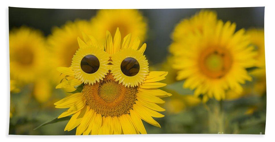 Sunflower Hand Towel featuring the photograph Sunflower by Mats Silvan